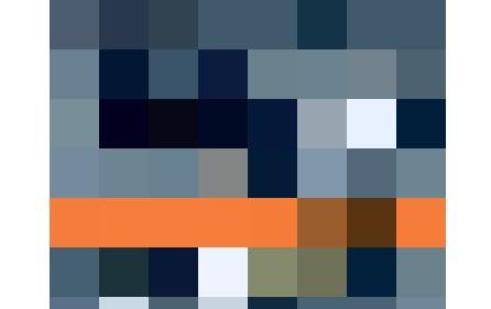 Es ist nicht immer der Gärtner: «Das Rätsel der blutigen Schere», Krimidinner-Spiel von Pegasus, Fr. 39.95, bei microspot.ch.