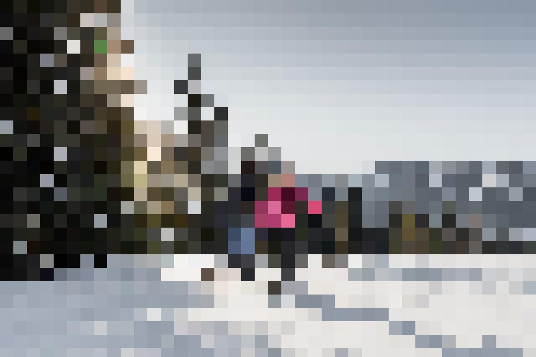 Schneeschuhwanderungen in der traumhaften Winterlandschaft bringen alle in die unberührte Natur: Schneeschuhwanderer unterwegs.