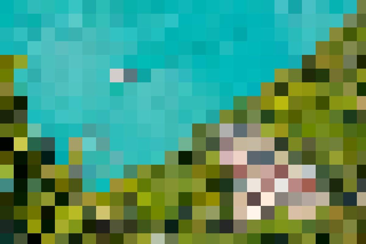 Romantisch – die türkise Farbe des Brienzersees und die malerische Umgebung wecken Frühlingsgefühle.