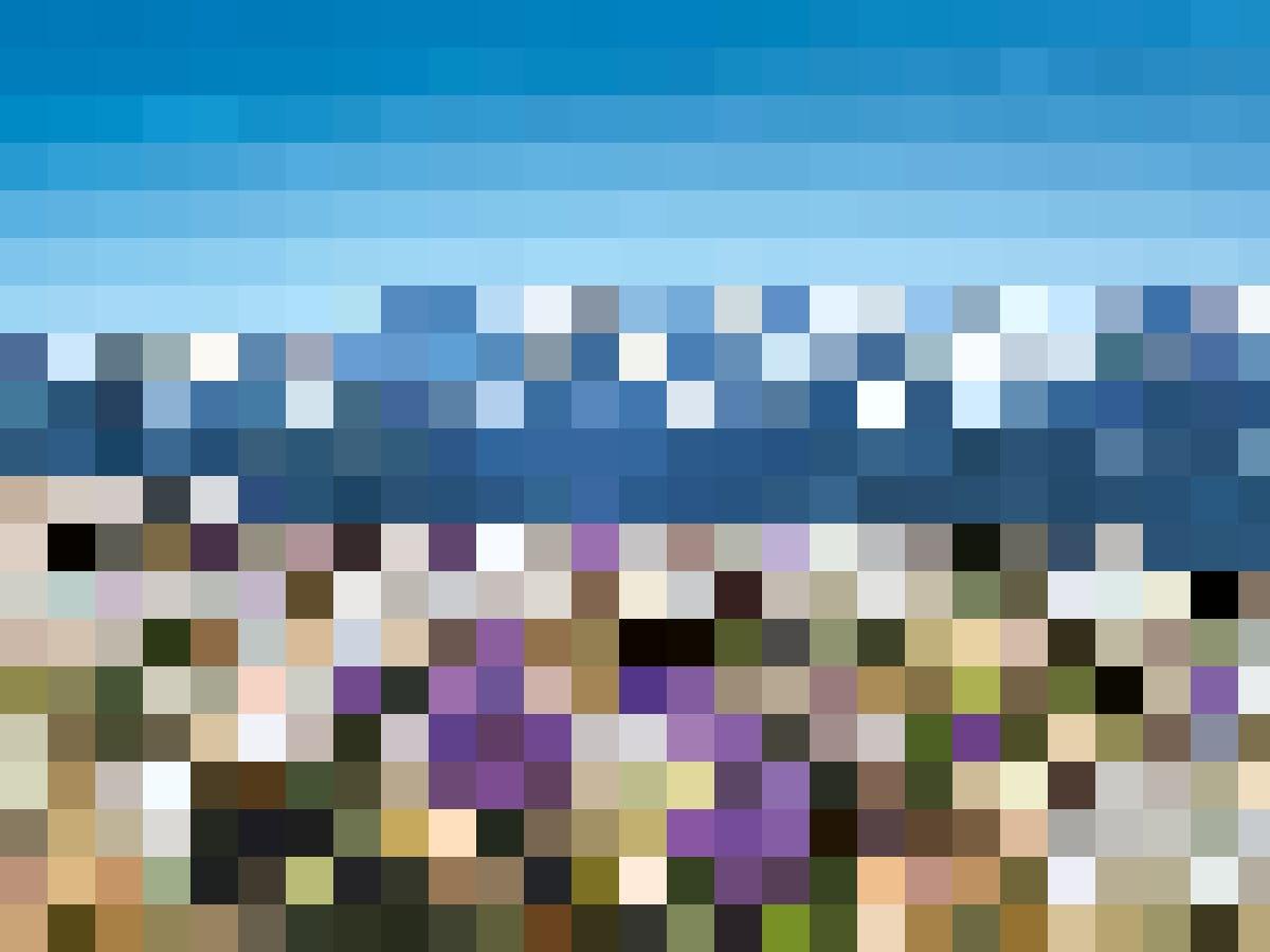 Frühlingshaft – eine Krokuswiese ob Beatenberg hoch über dem Thunersee.