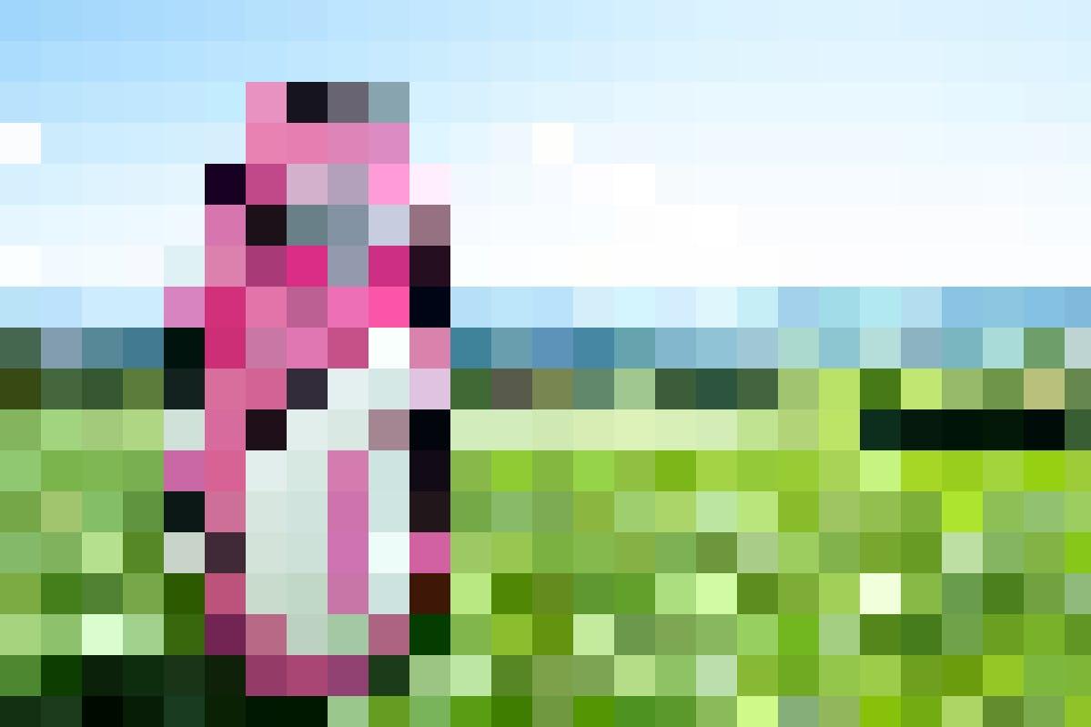 Bist du bereit für eine Golftour gegen Brustkrebs und mit traditioneller Pink Ribbon Ausstattung?