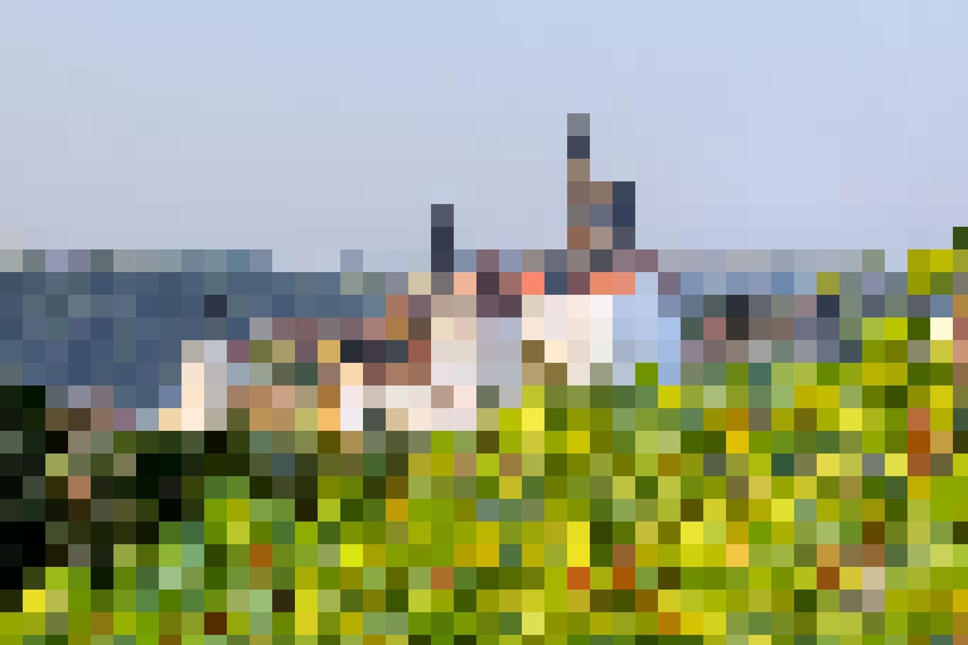 Die Albrechtsburg hinter Weinreben.