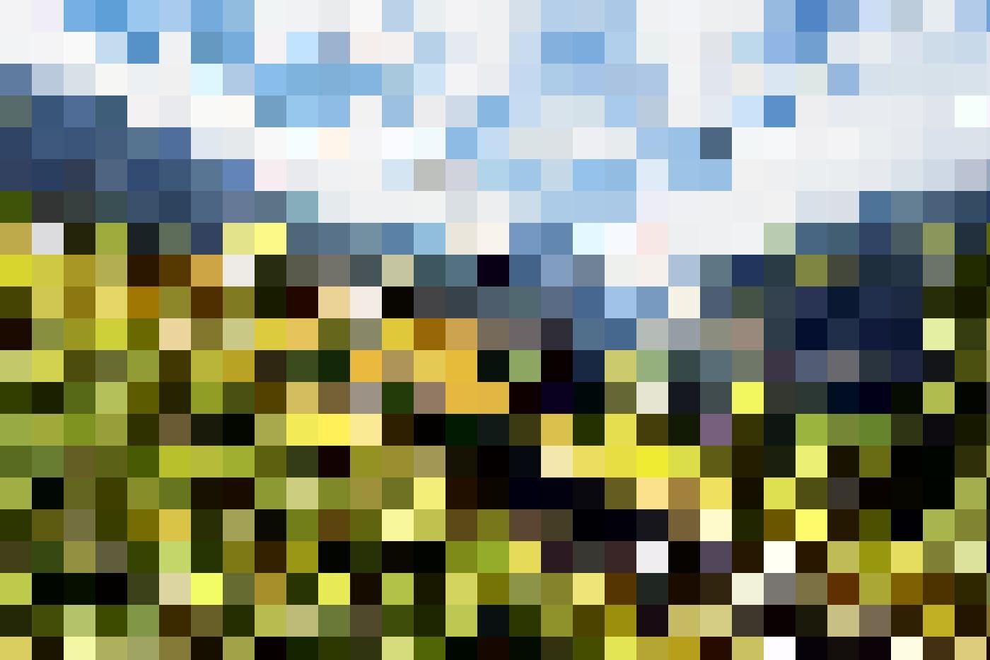 Mit der Wengerenalp druch Wiesen mit leuchtende Alpenblumen und ab und zu ein Murmeltier, das unter lauten Pfiffen in einem Erdloch verschwindet.