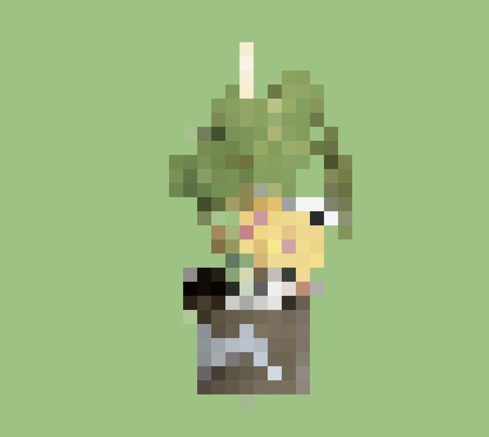 Plant de haricots grimpants,  pot de 11 cm, 3 fr. 95,