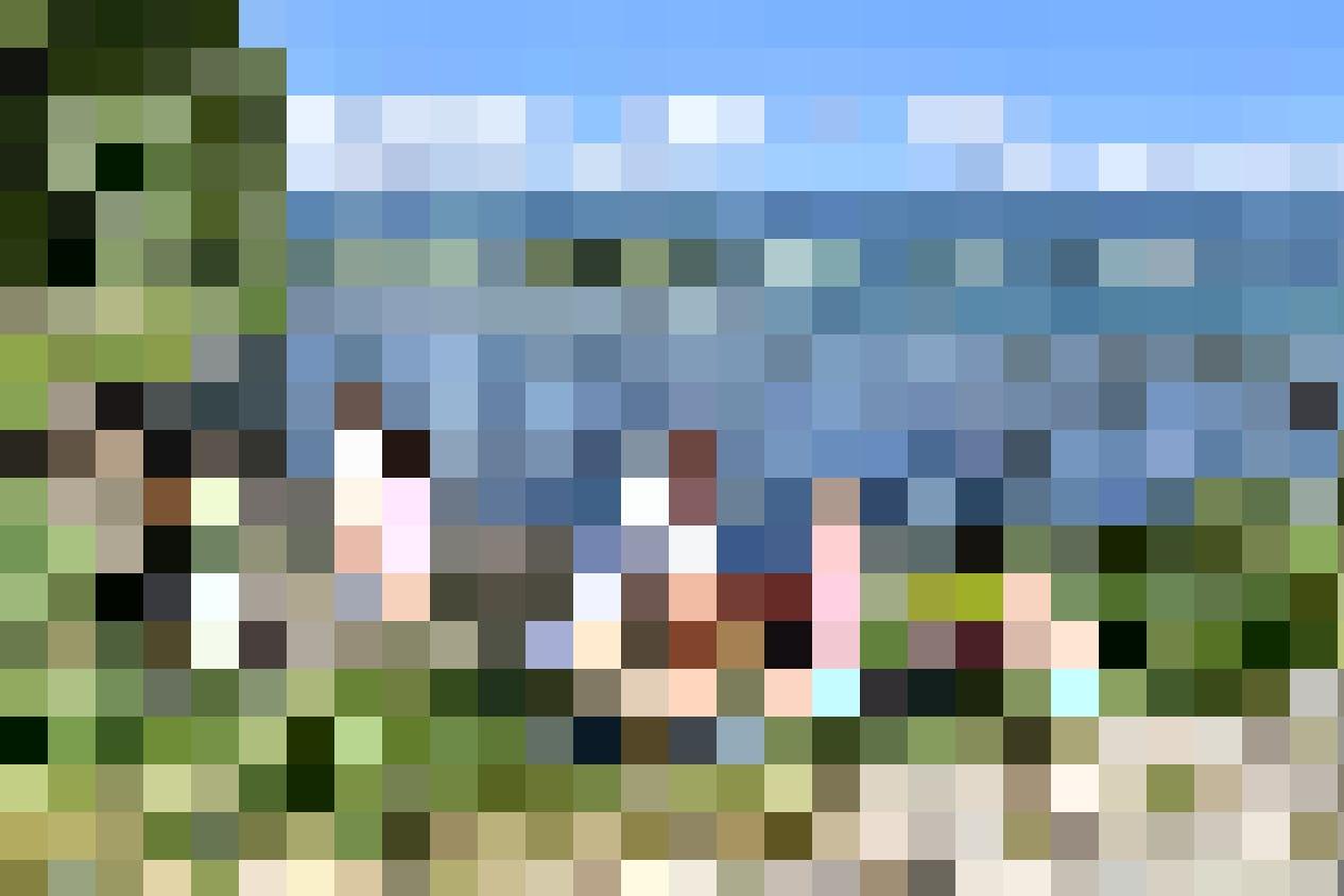 ... Ou sur celles du Lac de Neuchâtel, Mathieu Gleyre (au centre) et les participants mettent la main à la pâte.