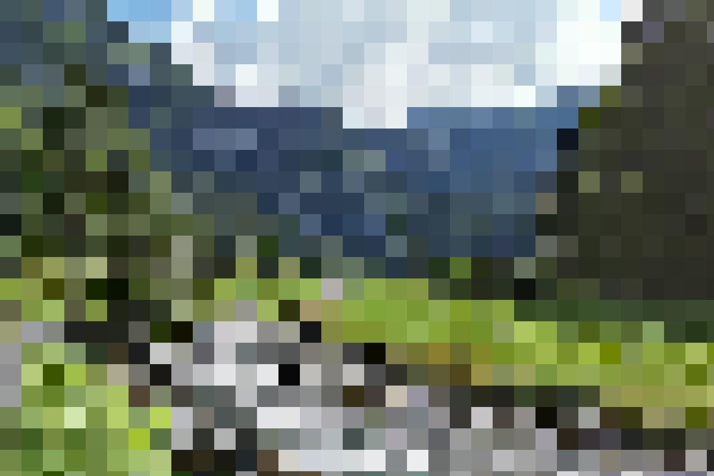 Parklandschaft – Das Giessbachtal ob den Wasserfällen ist dank seiner lieblichen, wunderbaren Landschaft ein echter Geheimtipp.