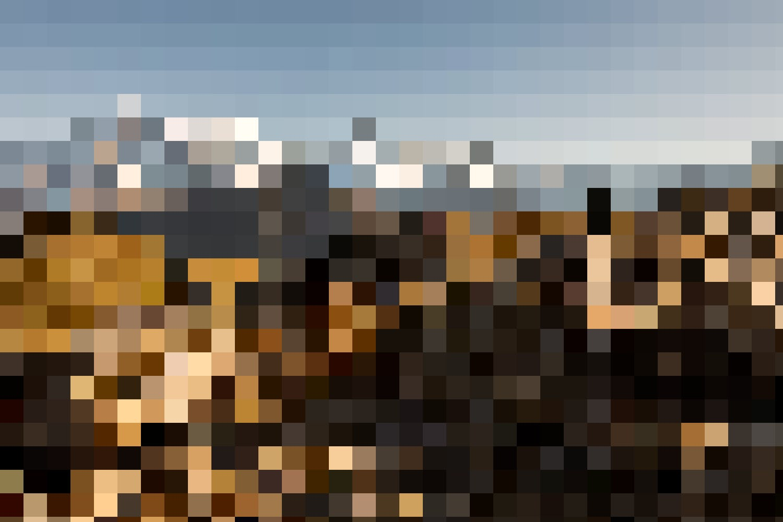 Grenzenlos – Die Jungfraujoch und Wander(s)pass Pauschale bietet freie Fahrt auf dem Streckennetz der Jungfraubahnen, wie hier auf die Schynige Platte. Dazu gibt es zwei oder drei Übernachtungen mit Frühstück.