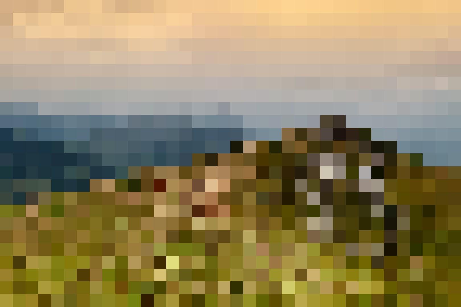 Kühe auf der Alp, Haldigrat in Wolfenschiessen